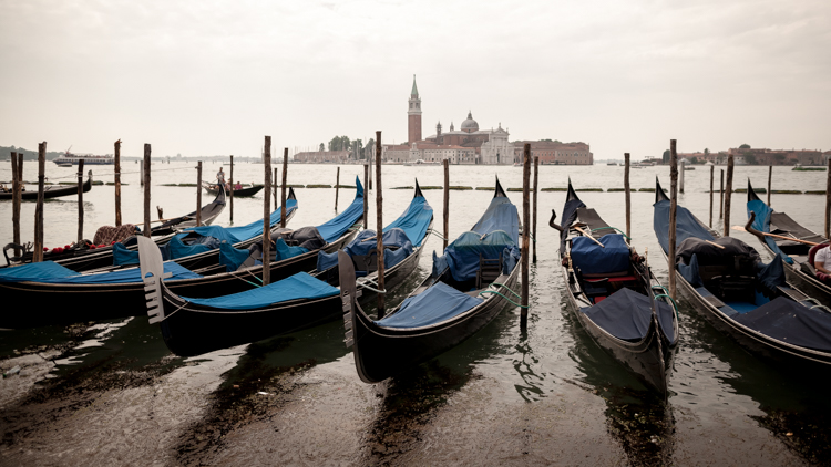 Blue gondolas in the Gran Canal with the Venice skyline in the background